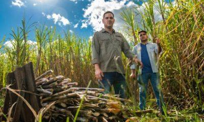 Se abordaron puntos como la liberación de la importación de azúcar con autorización previa. Foto: Gentileza