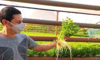 El Crédito Agrícola de Habilitación entregó créditos a 30.778 clientes. Foto: Agencia IP