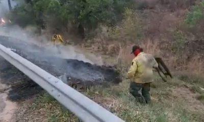 Quemazones causan daños ambientales. Foto: Captura de pantalla.