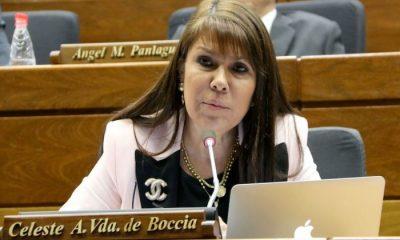 Diputada Celeste Amarilla. Foto: Archivo.