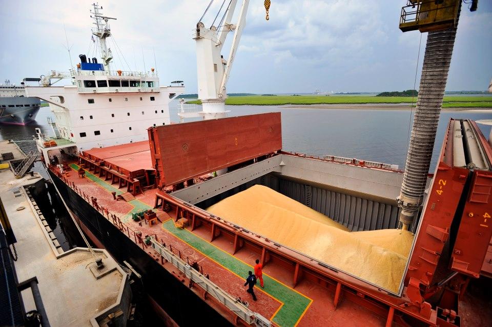 La soja sigue liderando las exportaciones. Foto: Capeco