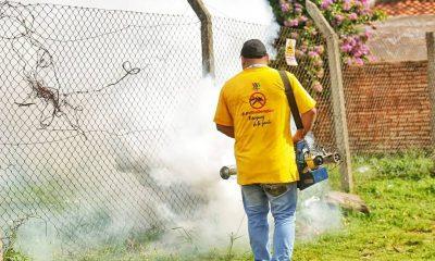 Fumigación. Foto: Gentileza