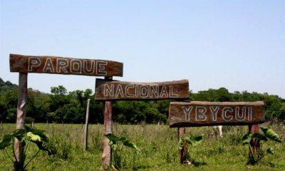 Auditoría del MADES ubica al senador Fidel Zavala como ocupante del Parque Nacional. Foto: MADES