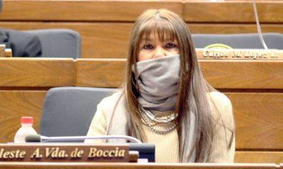 Banca del PLRA en diputados. FOTO HCD