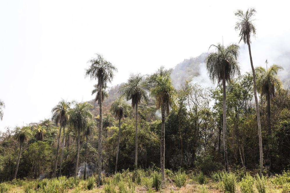 12 días de incendios en el Cerro Aquino de Caacupé. Foto: SEN