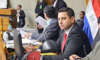 Diputado Pedro Alliana. Foto: Agencia IP