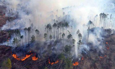 La fuerte sequía motivo una oleada de incendios en Paraguay.