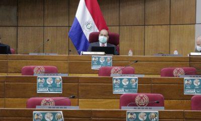 El Senado se enfrascó en una larga discusión por negociar con China Popular a nivel oficial. Foto: Senado