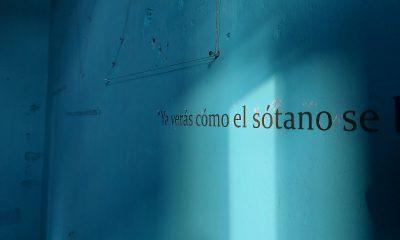 © Diego Ricardo Álvarez