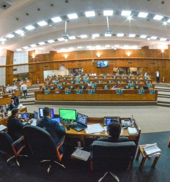 La Cámara de Diputados. (GENTILEZA)