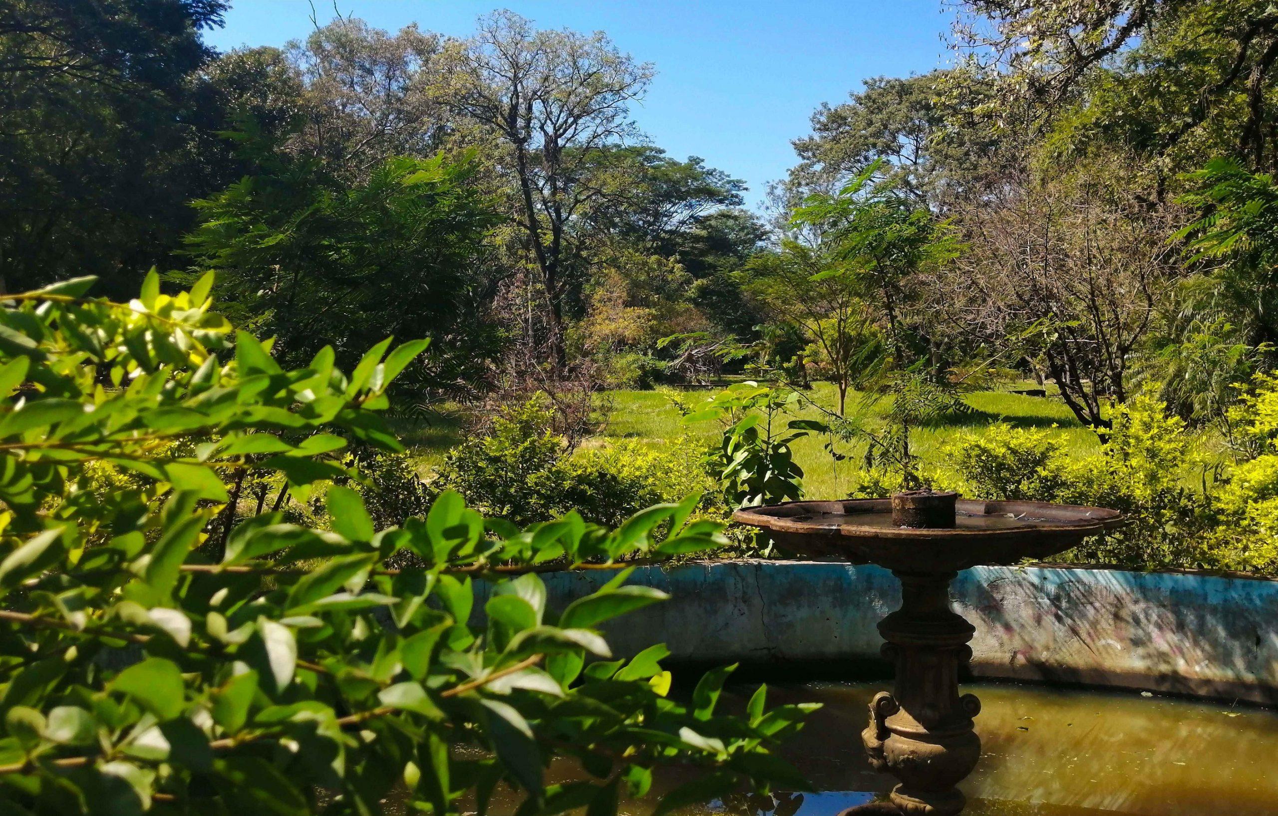Jardín Kamba'i, 2021 © Marli Delgado