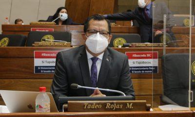 Diputado Tadeo Rojas. (Foto Diputados).