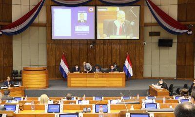 Sesión de la Cámara de Diputados. Foto: Gentileza.