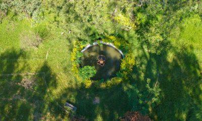 Jardín Kamba'i, vista aérea, 2021 © Gabriel Presentado