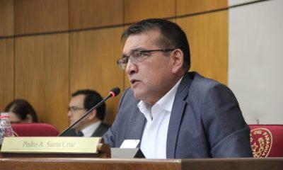 El senador Pedro Santa Cruz, en la Cámara Alta. (GENTILEZA)