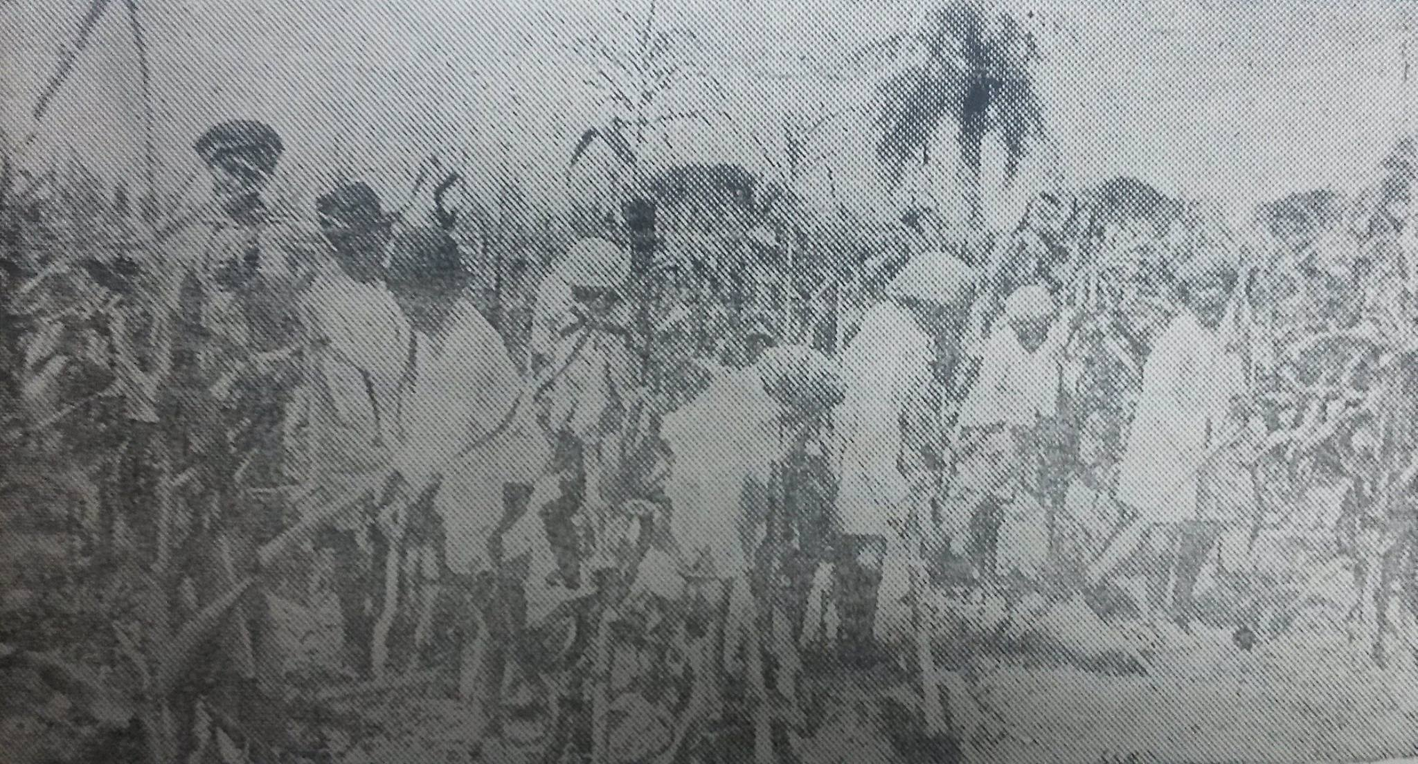 Cultivo de maíz en la Escuela Perú, de Asunción, 1930.