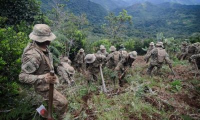 Soldados bolivianos destruyen plantas de coca durante programa de erradicación, Los Yungas, Bolivia. Foto: Agencias.