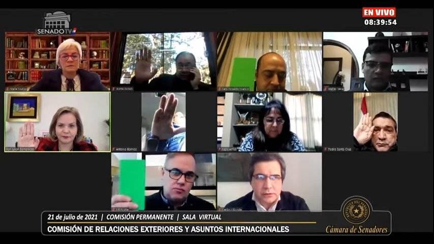 Reunión virtual de la comisión (Foto SENADO)