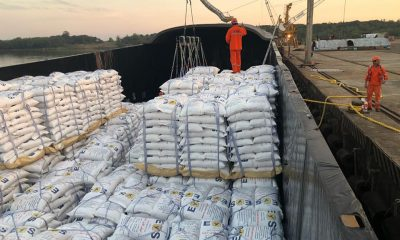 La exportación de arroz también viene creciendo aceleradamente. Foto: IP