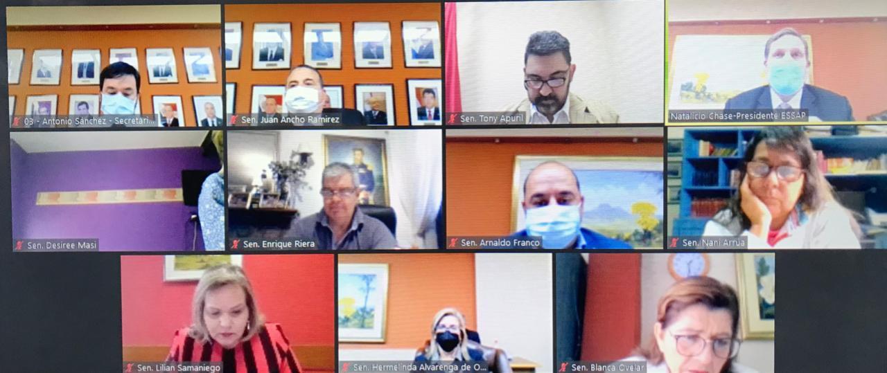 Reunión de los senadores con el presidente de la Essap. (Foto Senado)