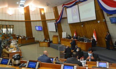 Sesión en la Cámara de Diputados. (Foto Diputados).