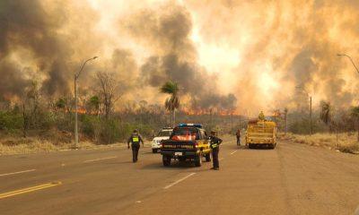 Se registraron varios incendios forestales en las últimas semanas. (Foto Gentileza).