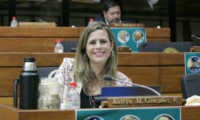 Diputada Kattya González (Foto Diputados).