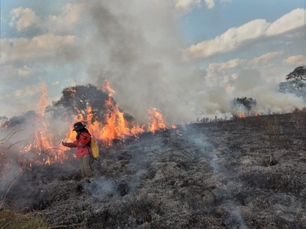 La quema ilegal de pastizales es lo que más preocupa a las autoridades. (Foto: Gentileza)
