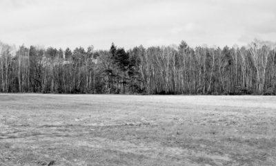"""""""Heimat es un espacio en el tiempo"""" (2019). Captura"""