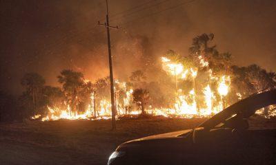 Incendios se generaron en todo el país. (Foto Gentileza).