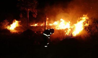 Incendios forestales, aún siguen activos en varios departamentos. Foto: Gentileza.