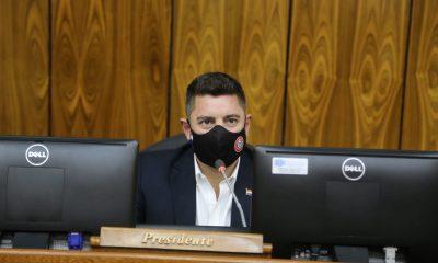 Pedro Alliana, Cámara de Diputados. (Foto Diputados).