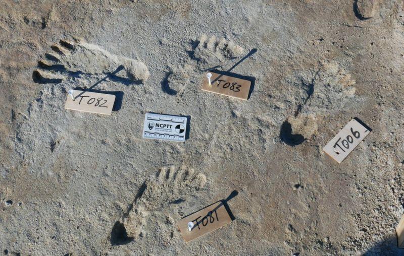 Las huellas pertenecen a niños y adolescentes que vivieron hace al menos 21.000 años. Foto: Universidad de Bournemouth.