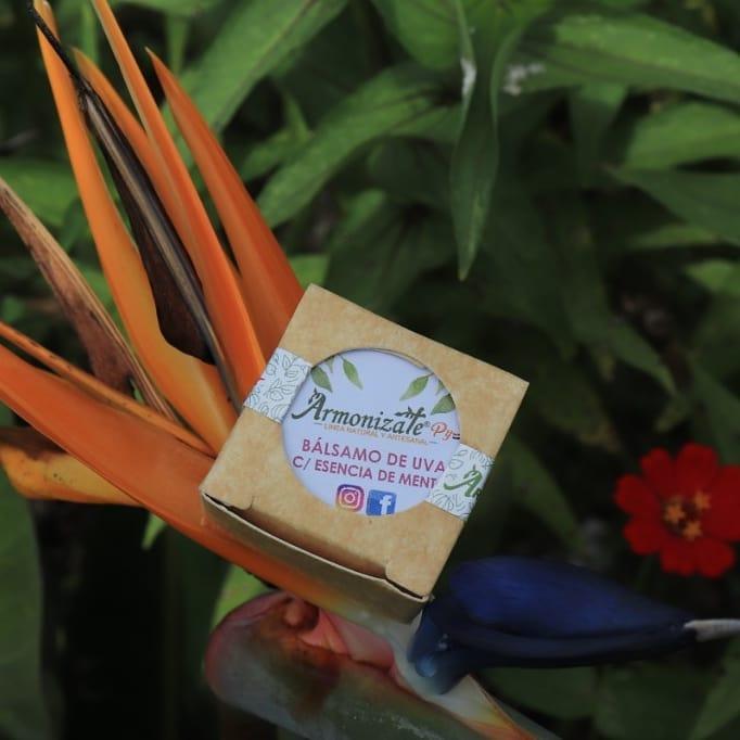 """""""La cosmética natural es segura en la medida en que se cuiden los ingredientes desde el origen"""". Foto: Gentileza."""