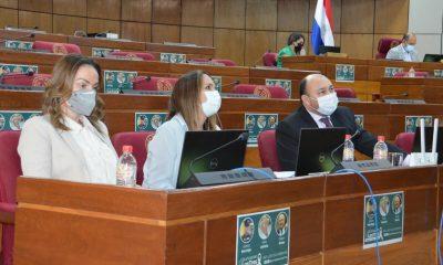 Fernández en la Cámara de Senadores. (Foto Senado)