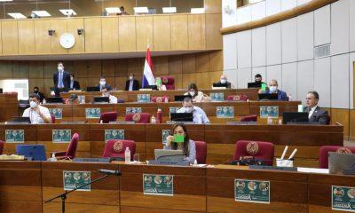 Cámara de Senadores. (Foto Senado).