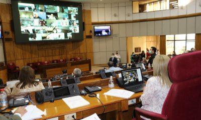 Sesión ordinaria en la Cámara de Senadores. (Foto Senado).