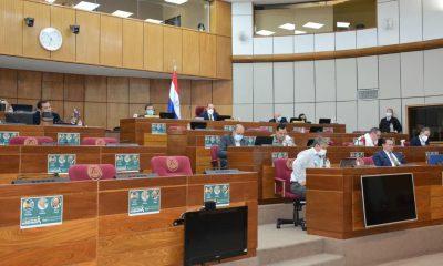 Durante la sesión de la Cámara de Senadores. (Foto Senado).