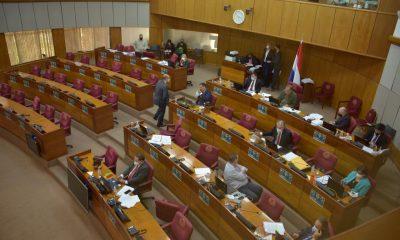 Sesión en la Cámara de Senadores. (Foto Senado).