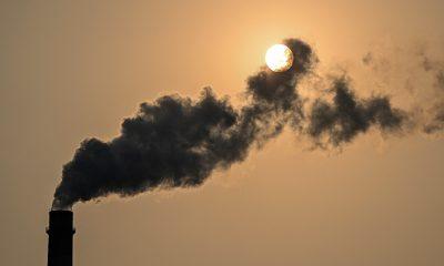 La vigésima sexta Conferencia de las Partes de la Convención de las Naciones Unidas sobre el Cambio Climático, organizada esta vez por el Reino Unido en colaboración con Italia, comenzará el 31 de octubre. Foto: Agencias.